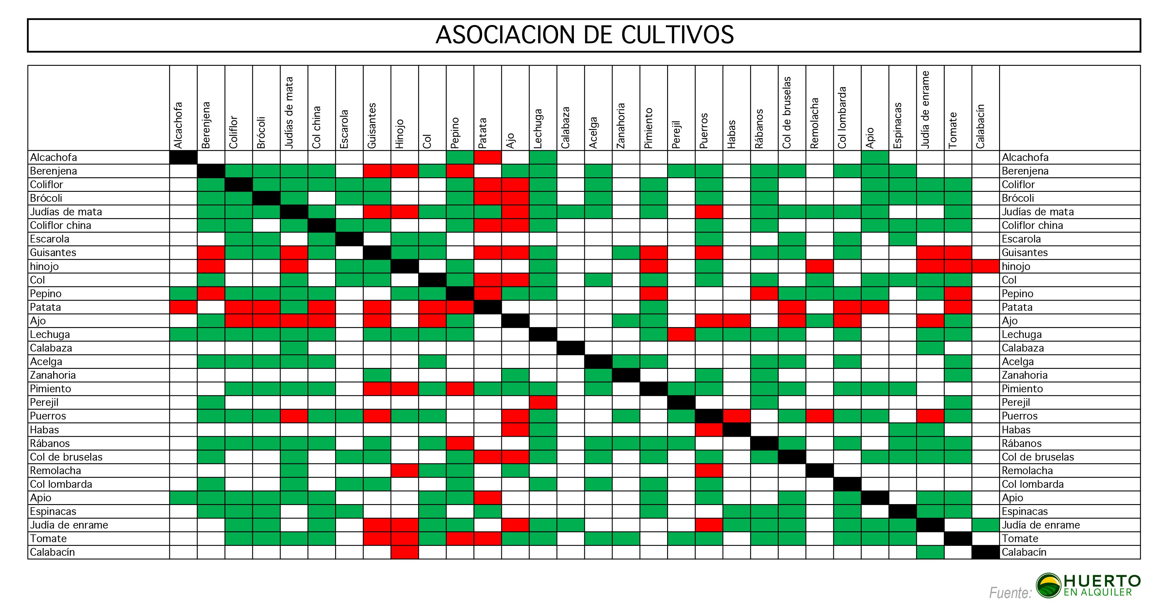 Asociaci n de cultivos for Asociacion de cultivos tomate